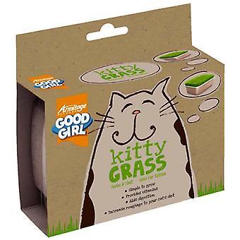 العشب كيتي-لتحسين النظام الغذائي القطط