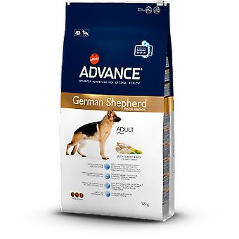 Advance German Shepherd (Dogs , Dog Food , Dry Food)