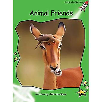 Animal Friends: Level 4: Early (Red Rocket Readers: Non-fiction Set B)