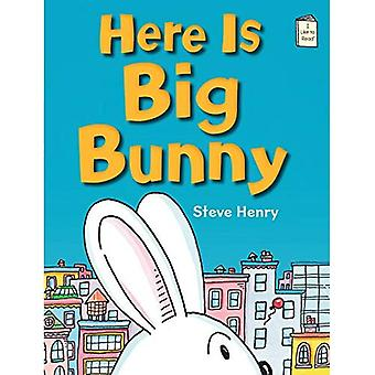 Här är Big Bunny (jag gillar att läsa böcker)