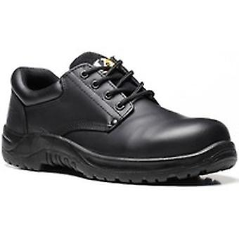 V12 VR608 Tiger Black Derby Shoe EN20345:2011-S3 Size 8