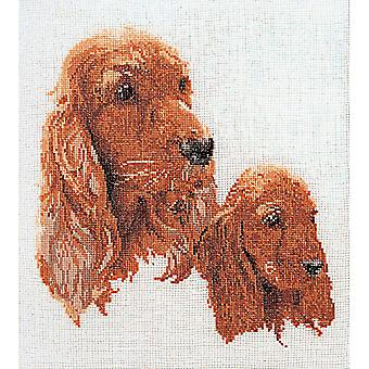Spaniels On Aida Counted Cross Stitch Kit 11 3 4