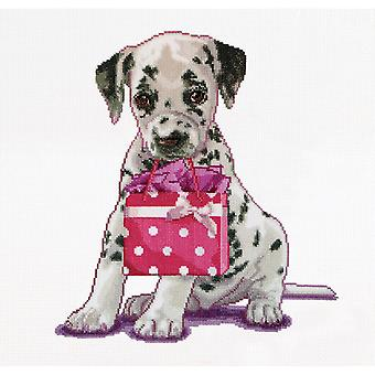 Puppy Went Shopping On Aida Counted Cross Stitch Kit 12 1 4