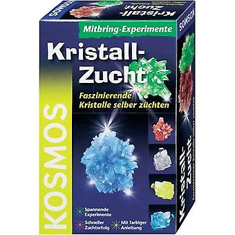 Science kit Kosmos Mitbring-Experimente Kristall-Zucht 659028 10 years and over