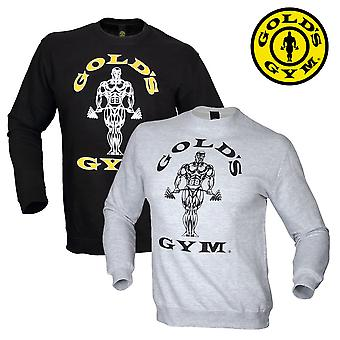 Golds gym sweater fitted Sweatshirt