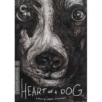 Heart of a Dog [DVD] USA import