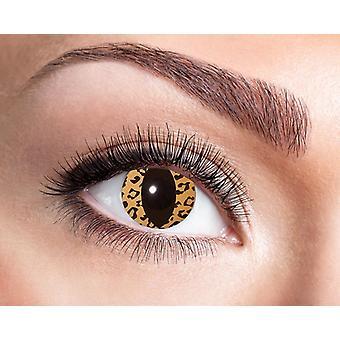 Cat Leopard contact lenses