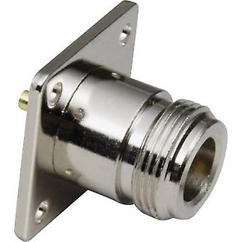 N connector Socket, vertical vertical 50 Ω BKL Electronic 0404027 1 pc(s)