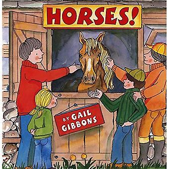 I cavalli!