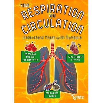 Hengitys ja verenkierto: ymmärtää numeroilla (Your Body By numerot)