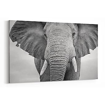 Large A1 A2 A3 Panel Panoramic Black and White Elephant Canvas Wall Art for your Living Room Prints - Pictures