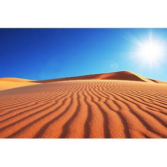 Tapet, Mural, ørkener, Sune