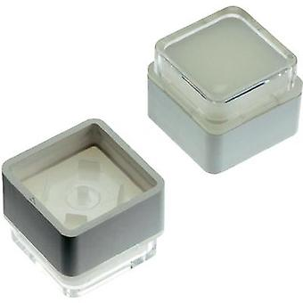 Switch cap White (diffuse) Mentor 2271.4012 1 pc(s)