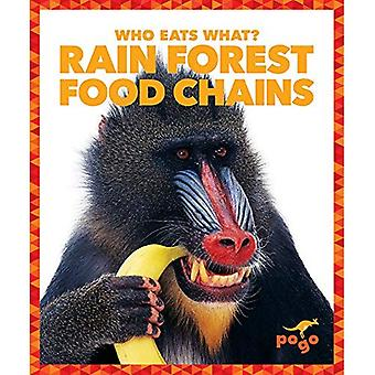 Rain Forest Food Chains (Who Eats What?)
