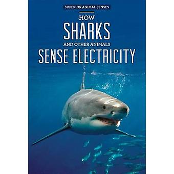 How Sharks and Other Animals Sense Electricity by Christine Honders -