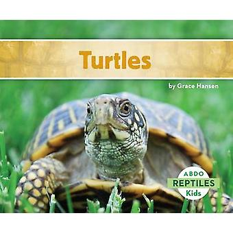 Turtles by Grace Hansen - 9781629700625 Book