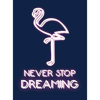 Never Stop Dreaming - 9781786850249 Book