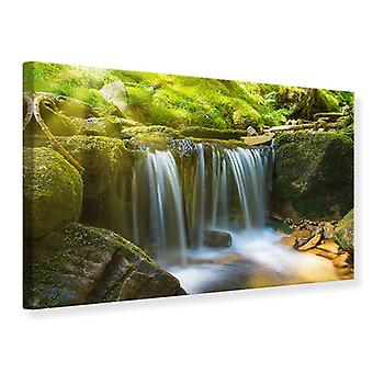 Canvas Print Beauty Of Falling Water
