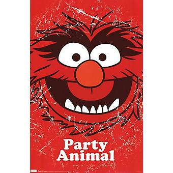 Muppets - Party Animal Poster Print