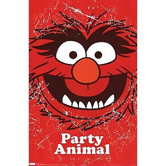 Muppets - Party Tier Poster drucken
