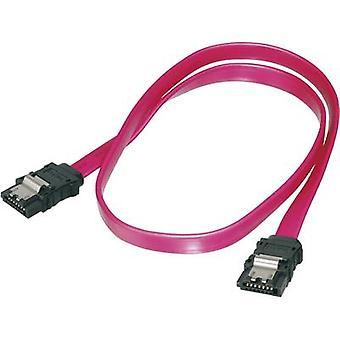 Hard drives Cable [1x SATA socket 7-pin - 1x SATA socket 7-pin] 0.30 m