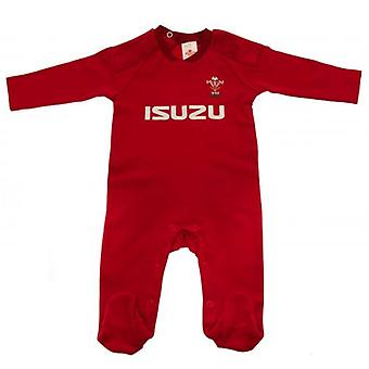 Wales R.U. Sleepsuit 9/12 mths PS