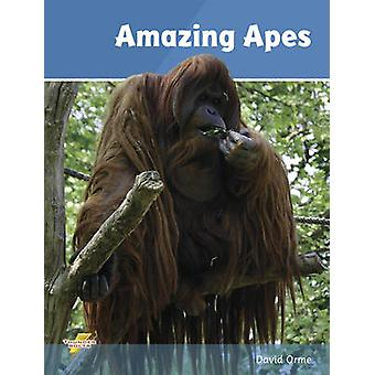 Amazing Apes - Set 2 by David Orme - 9781781270684 Book