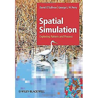 Simulação espacial