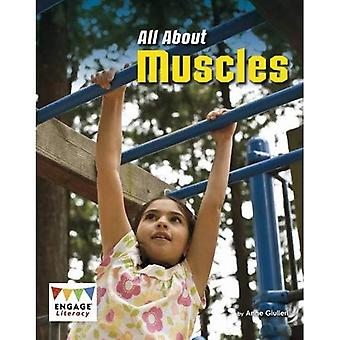All About Muscles (Engage Literacy: Engage Literacy White)