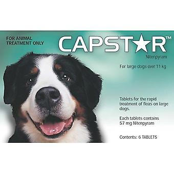 Capstar Large Dog Tablets