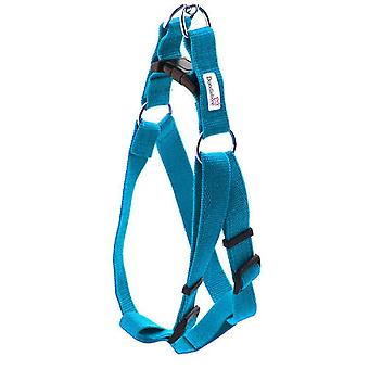 Doodlebone Bold Nylon Harness Cyan Small 20mm X 30-50cm