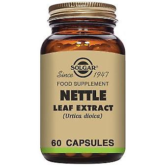 Solgar Nettle Leaf Extract - 60 Vegicaps (Diet , Supplements)