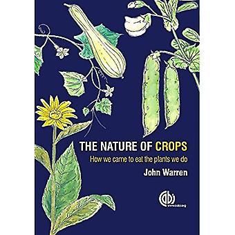 Arten av grödor: hur vi kom att äta de växter som vi gör