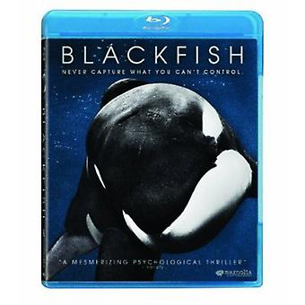 Blackfish [BLU-RAY] USA import