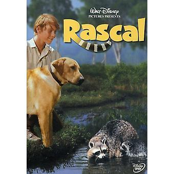 Rascal [DVD] USA importerer