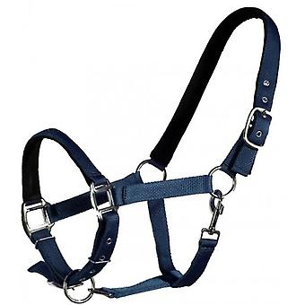QHP Full Straight Blue Bridle