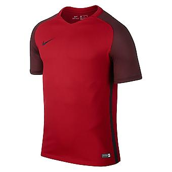 Nike Dry Revolution IV Jsy 833017657   men t-shirt