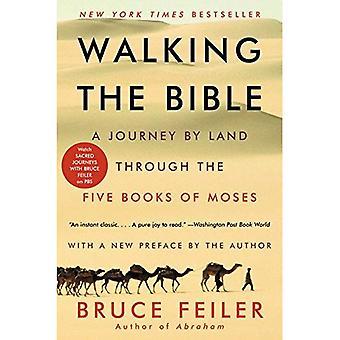 Wandelen van de Bijbel: een reis over Land via de vijf boeken van Mozes