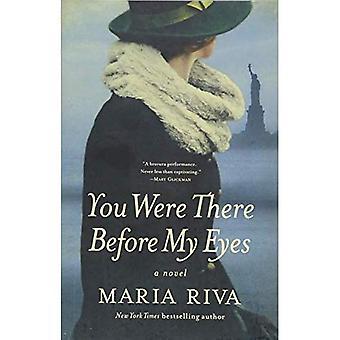 Du var där innan mina ögon - en roman