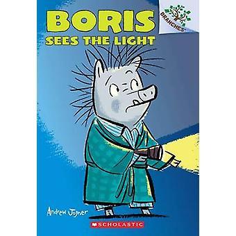 Boris Sees the Light by Andrew Joyner - 9780545484541 Book