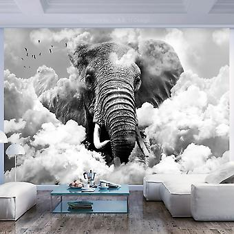 Fototapete - Elephant in the Clouds (Black and White)