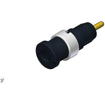 Safety jack socket Socket, vertical vertical Pin diameter: 2 mm Black