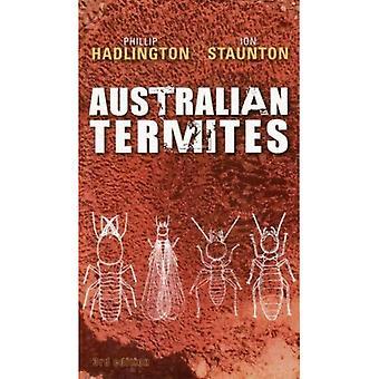 Australische termieten
