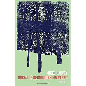 Unstable Neighbourhood Rabbit