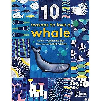 10 bonnes raisons d'aimer un... Baleine (10 raisons d'aimer un...)