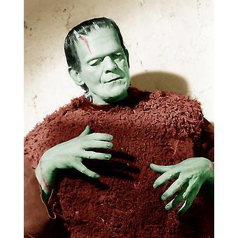 Son Of Frankenstein Boris Karloff 1939 Photo Print