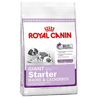 Royal Canin Giant Starter (Honden , Voeding , Droogvoer)