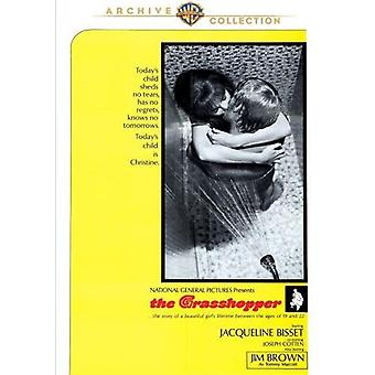 Grasshopper [DVD] USA import
