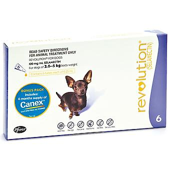 Revolusjon (lilla) for ekstra hundene på 2.6-5kg (5.5-11lbs), 6 Pack