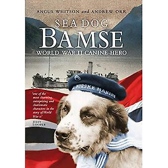 Sea Dog Bamse: World War II Canine Hero